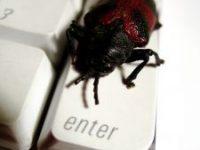Sorge um Gefahren aus dem Internet nehmen zu