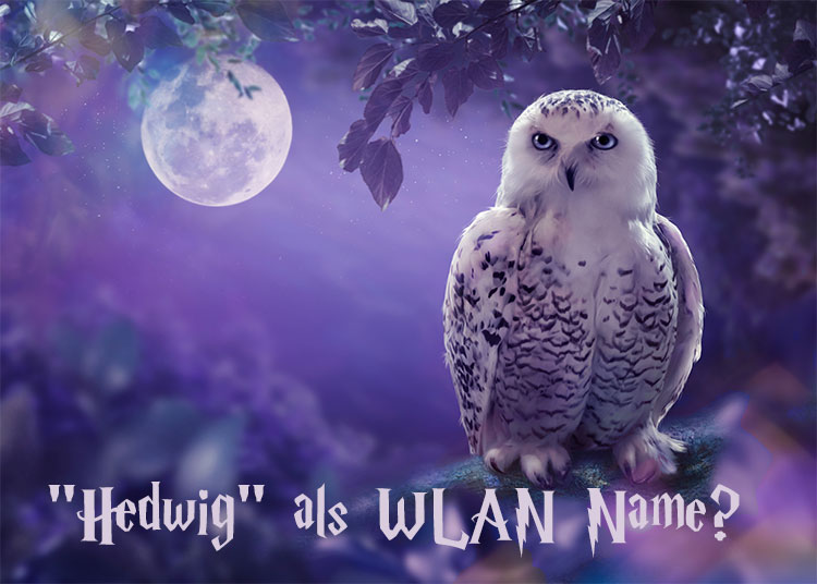Hedwig als WLAN-Name?